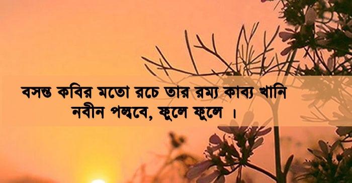 Pohela Falgun Photo
