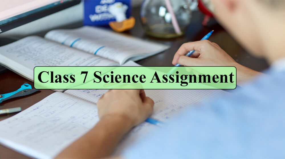 Class 7 Biggan Assignment Answer