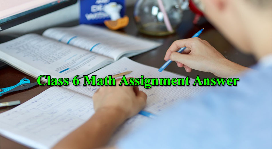 Class 6 Math Assignment Answer
